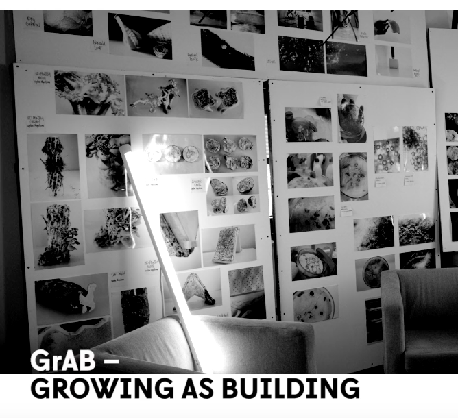 Contemporary Code: GrAB - Growing as Building
